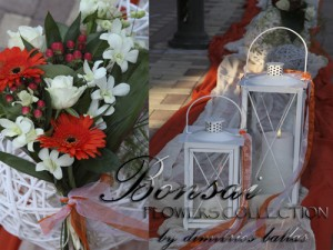 BONSAI – ΜΠΑΛΛΑΣ ΔΗΜ.